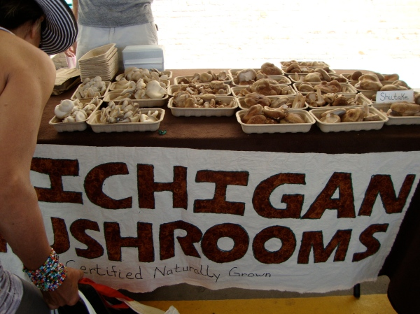 Michigan Mushrooms